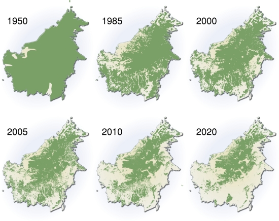 Extent of deforestation in Borneo from 1950 to 2005. Author: Hugo Ahlenius, UNEP/GRID-Arendal.