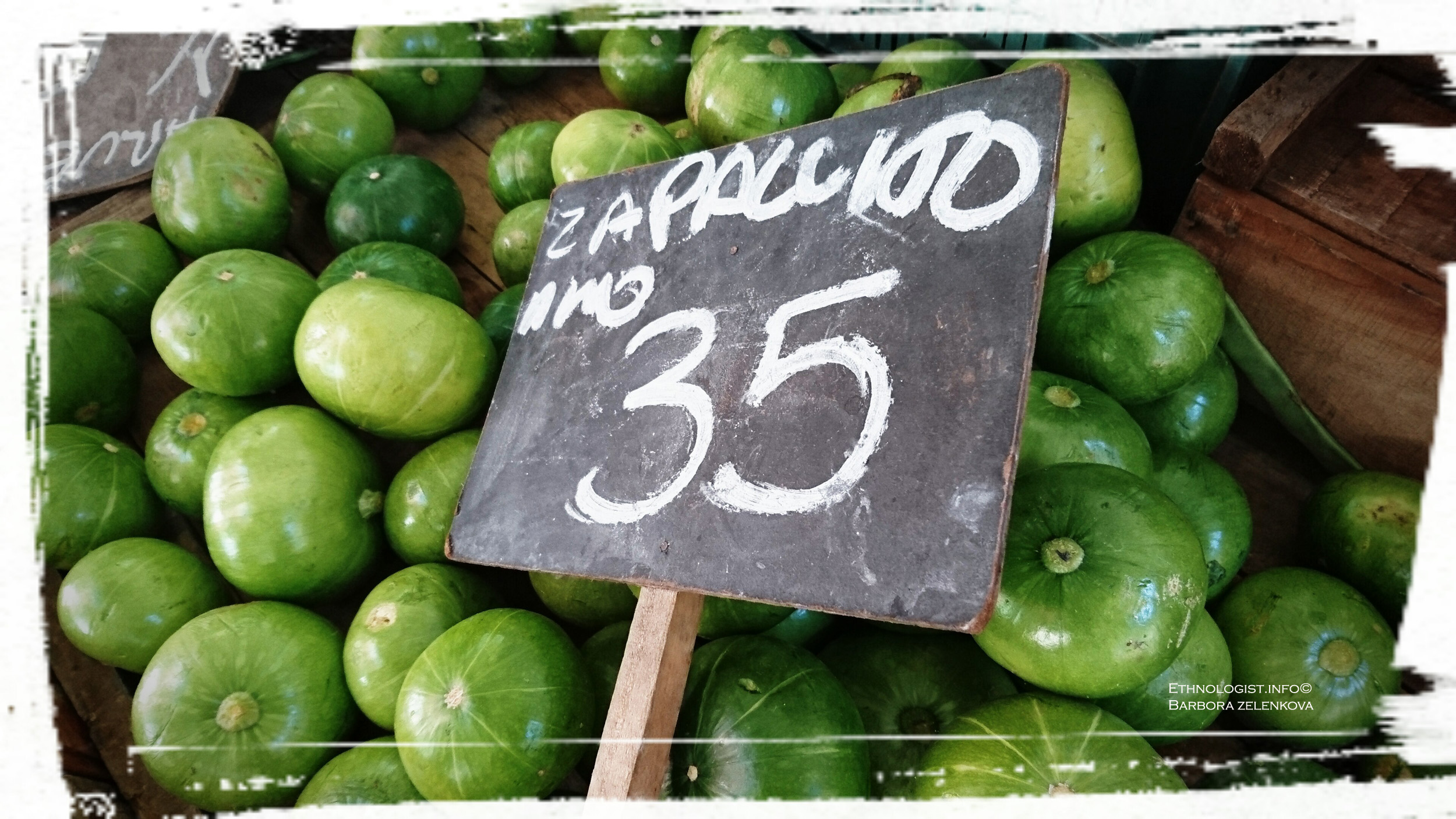 Popular vegetable Zapallitos in market in Montevideo. Photo: Barbora Zelenková, December, 2016.