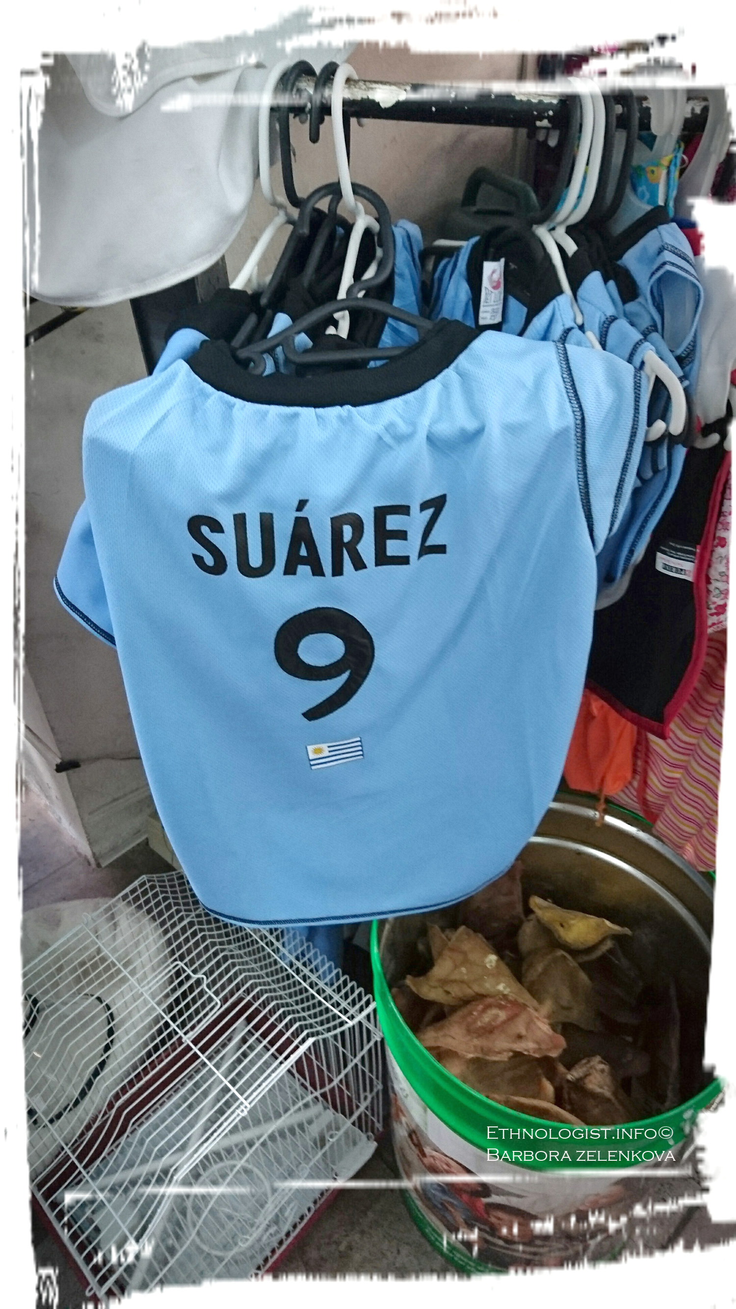 Dog football outfit with the name of Suárez. Photo: Barbora Zelenková, December, 2016.