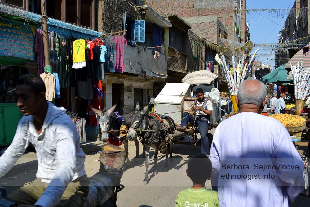 Chlapec s károu a oslíky v Manšíjat Násir. Káhira, říjen 2011, foto: Barbora Šajmovičová.