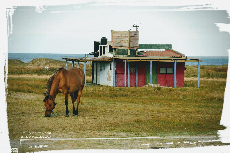 "Pohled na ""rancho del Cabo"" v osadě Cabo Polonio. Foto: Barbora Zelenková, Prosinec 2016."