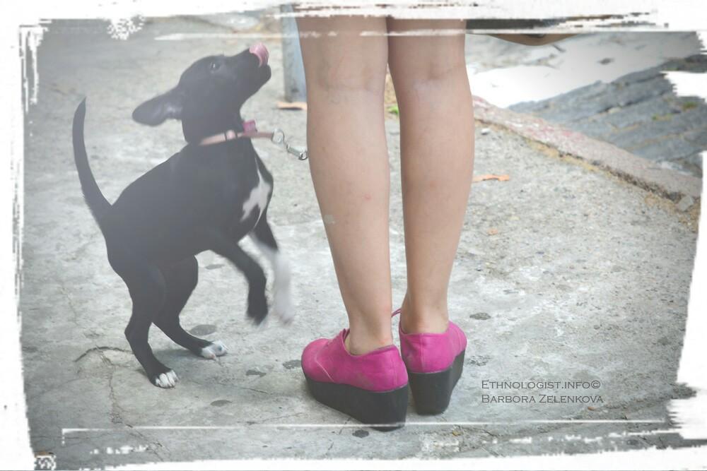Slečna ve velmi populárních botách briketách s malým psíkem. Foto: Barbora Zelenková, Prosinec, 2016, Colonia del Sacramento.