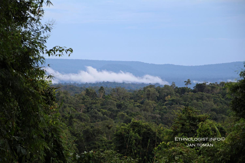 Kardamomové hory a deštný prales. Foto: Jan Toman, Kambodža